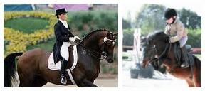 partenaire centres equestres