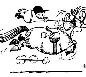 Selles poney