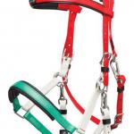 vert-blanc-rouge
